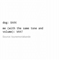 Ironic, Dog, and Source: dog: BARK  me (with the same tone and  volume): WHAT  Source: tsunemoriakande I really need to stop waking up so late!!!