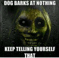 nothing: DOG BARKS AT NOTHING  KEEPTELLING YOURSELF  THAT