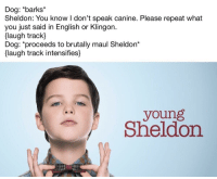 """Memes, Http, and English: Dog: *barks  Sheldon: You know I don't speak canine. Please repeat what  you just said in English or Klingon.  flaugh track  Dog: *proceeds to brutally maul Sheldon*  laugh track intensifies]  young  Sheldon <p>Young Sheldon memes seem to be solid right now. Not sure to invest, though. via /r/MemeEconomy <a href=""""http://ift.tt/2yelZvR"""">http://ift.tt/2yelZvR</a></p>"""