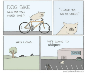 """me🚲irl by Oooh_Friend FOLLOW HERE 4 MORE MEMES.: DOG BIKE  WHY DO YOU  NEED THIS?  I HAVE TO  GO TO WORK""""  HE'S GOING TO  shitpost  HE'S LYING  /r/meirl  poorlydrawnlines.com me🚲irl by Oooh_Friend FOLLOW HERE 4 MORE MEMES."""