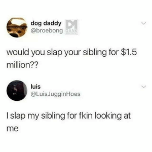 Dank, Dog, and Looking: dog daddy  @broebong DANK  would you slap your sibling for $1.5  million??  luis  @LuisJugginHoes  I slap my sibling for fkin looking at  me