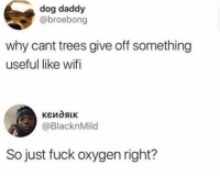 Funny, Lol, and Smh: dog daddy  @broebong  why cant trees give off something  useful like wifi  @BlacknMild  So just fuck oxygen right? Smh idiot lol