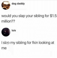 Ayyyy 😂💀: dog daddy  would you slap your sibling for $1.5  million??  luis  I slap my sibling for fkin looking at  me Ayyyy 😂💀