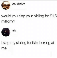 Lit, Memes, and 🤖: dog daddy  would you slap your sibling for $1.5  million??  luis  I slap my sibling for fkin looking at  me Follow @whitepeoplehumor for more lit posts 🔥🔥