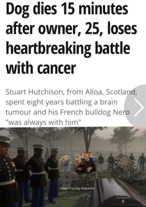 "Dogs, Heaven, and Reddit: Dog dies 15 minutes  after owner, 25, loses  heartbreaking battle  with cancer  Stuart Hutchison, from Alloa, Scotland,  spent eight years battling a brain  tumour and his French bulldog Nero  ""was always with him""  Press F to Pay Respects  Pay Respects All dogs go to heaven. It has to be true."