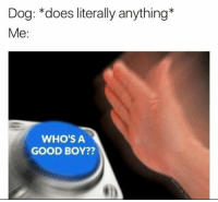 Good, Boy, and Dog: Dog: *does literally anything*  Me:  WHO'S A  GOOD BOY??
