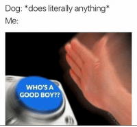 Dank Memes, Good Boy, and Whos A: Dog: does literally anything*  Me  WHO'S A  GOOD BOY?? @theworldpolice