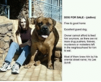 Dogs, Memes, and 🤖: DOG FOR SALE Jethro)  Free to good home  Excellent guard dog.  Owner cannot afford to feed  him anymore, as there are no  more drug pushers, thieves,  murderers or molesters left  in the neighbourhood for him  to eat.  Most of them knew him by his  oriental street name, Ho Lee  Schitt