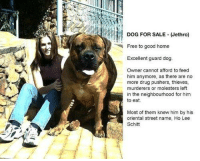 Dank, 🤖, and The Neighbourhood: DOG FOR SALE Jethro)  Free to good home  Excellent guard dog.  Owner cannot afford to feed  him anymore, as there are no  more drug pushers, thieves,  murderers or molesters left  in the neighbourhood for him  to eat.  Most of them knew him by his  oriental street name, Ho Lee  Schitt JethroLAD