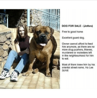 Memes, Butterfly, and Free: DOG FOR SALE Jethro)  Free to good home  Excellent guard dog.  Owner cannot afford to feed  him anymore, as there are no  more drug pushers, thieves,  murderers or molesters left  in the neighbourhood for him  to eat.  Most of them knew him by his  oriental street name, Ho Lee  Schlitt Follow my other accounts @x__antisocial_butterfly__x @lola_the_ladypug ❤️