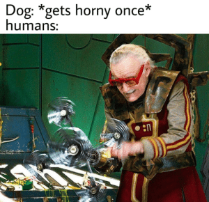 It do be like that.: Dog: *gets horny once*  humans: It do be like that.