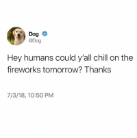 Chill, Memes, and Fireworks: @Dog  Hey humans could y'all chill on the  fireworks tomorrow? Thanks  7/3/18, 10:50 PM PUBLIC SERVICE ANNOUNCEMENT: (@_theblessedone)