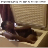 Friends, Funny, and Mood: Dog I died laughing! This been my mood all summer!  IG:@bruhhhvideo •••••••••• 👉🏿 Follow @comedy 😂 Tag 5 friends for a shoutout! ✅ DM this video to 5 friends for a follow!