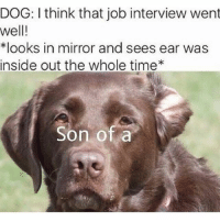 Inside Out, Job Interview, and Memes: DOG: I think that job interview went  well!  *looks in mirror and sees ear was  inside out the whole time  Son of a Does anybody know what a good boys starting salary is???