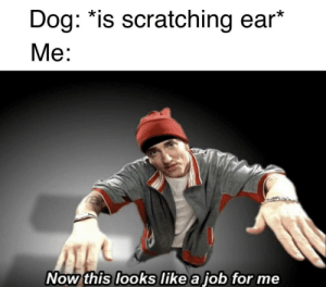 Good, Boi, and Dog: Dog: *is scratching ear  Me:  Now this looks like a job for me The good boi deserves it :)