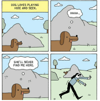 (Comic by @war.and.peas ) watch out for the last one -ben the hen: DOG LOVES PLAYING  HIDE AND SEEK.  SHE'LL NEVER  FIND ME HERE.  HAHA (Comic by @war.and.peas ) watch out for the last one -ben the hen