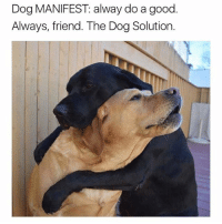 Memes, Twitter, and Good: Dog MANIFEST alway do a good.  Always, friend. The Dog Solution. FUREVR-ALWAY [twitter: DogSolutions]