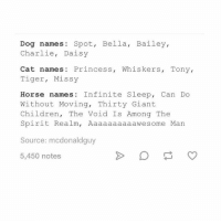 Dude yeah why are horse names so damn extra I mean I want a cat named eternal nebula or some shit - mon textpost textposts: Dog names Spot, Bella, Bailey,  Charlie, Daisy  Cat names: Princess, Whiskers, Tony,  Tiger, Missy  Horse names: Infinite Sleep, Can Do  Without Moving, Thirty Giant  Children, The Void Is Among The  Spirit Realm, Aaaaaaaaaawesome Man  Source: mcdonaldguy  5,450 notes Dude yeah why are horse names so damn extra I mean I want a cat named eternal nebula or some shit - mon textpost textposts