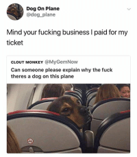 Doge, Fucking, and Funny: Dog On Plane  @dog_plane  Mind your fucking business I paid for my  ticket  CLOUT MONKEY @MyGemNow  Can someone please explain why the fuck  theres a dog on this plane Fuck off clout monkey this doge is going places.