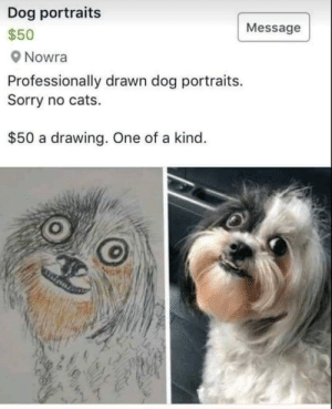 hmmm: Dog portraits  Message  $50  Nowra  Professionally drawn dog portraits.  Sorry no cats.  $50 a drawing. One of a kind. hmmm
