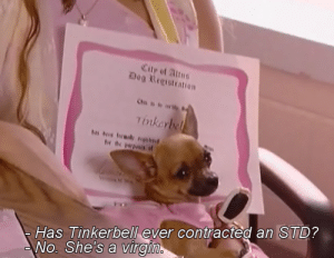 Dog: Dog Registration  Has Tinkerbell ever contracted an STD?  No. She's a virgi