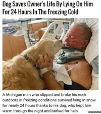 https://t.co/fl8uRPzQkh: Dog Saves Owner's Life By Lying On Him  For 24 Hours In The Freezing Cold  A Michigan man who slipped and broke his neck  outdoors in freezing conditions survived lying in snow  for nearly 24 hours thanks to his dog, who kept him  warm through the night and barked for help. mnmscom https://t.co/fl8uRPzQkh