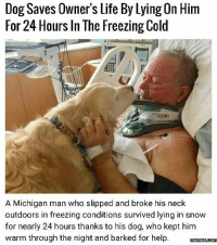 Kepted: Dog Saves Owner's Life By Lying On Him  For 24 Hours In The Freezing Cold  A Michigan man who slipped and broke his neck  outdoors in freezing conditions survived lying in snow  for nearly 24 hours thanks to his dog, who kept him  warm through the night and barked for help