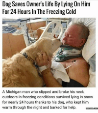 Homie, Life, and Help: Dog Saves Owner's Life By Lying On Him  For 24 Hours In The Freezing Cold  A Michigan man who slipped and broke his neck  outdoors in freezing conditions survived lying in snow  for nearly 24 hours thanks to his dog, who kept him  warm through the night and barked for help. menascom 😭😭😭😭😭 Repost from my homie @idratherbewithmydog