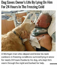 <p>Doggo saves owner</p>: Dog Saves Owner's Life By Lying On Him  For 24 Hours In The Freezing Cold  A Michigan man who slipped and broke his neck  outdoors in freezing conditions survived lying in snow  for nearly 24 hours thanks to his dog, who kept him  warm through the night and barked for help <p>Doggo saves owner</p>