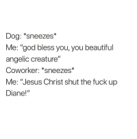 "The accuracy (@animalsmeettheinternet): Dog: *sneezes*  Me: ""god bless you, you beautiful  angelic creature""  Coworker: *sneezes*  Coworker: ""sneezes  Me: ""Jesus Christ shut the fuck up  Diane!"" The accuracy (@animalsmeettheinternet)"