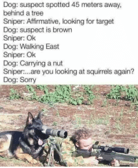 Dank, 🤖, and Dog: Dog: suspect spotted 45 meters away,  behind a tree  Sniper: Affirmative, looking for target  Dog: suspect is brown  Sniper: Ok  Dog: Walking East  Sniper: Ok  Dog: Carrying a nut  are you looking at squirrels again?  Sniper  Dog: Sorry