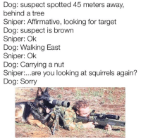 Dank, 🤖, and Dog: Dog: suspect spotted 45 meters away,  behind a tree  Sniper: Affirmative, looking for target  Dog: suspect is brown  Sniper: Ok  Dog: Walking East  Sniper: Ok  Dog: Carrying a nut  Sniper  are you looking at squirrels again?  Dog: Sorry