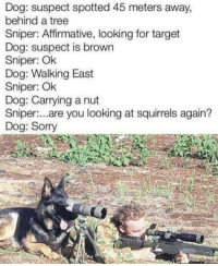 Memes, Sorry, and Target: Dog: suspect spotted 45 meters away,  behind a tree  Sniper: Affirmative, looking for target  Dog: suspect is brown  Sniper: Ok  Dog: Walking East  Sniper: Ok  Dog: Carrying a nut  Sniper..are you looking at squirels again?  Dog: Sorry  uloking at squres againt