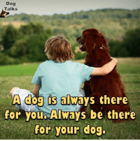 Dogs, Memes, and Being There: Dog  Talks  A dog s always there  for you Always be there  for your dog