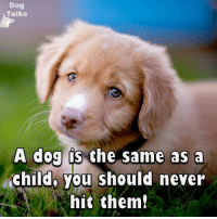 Memes, Never, and 🤖: Dog  Talks  A dog S  the same as a  child, you should never  hit them!