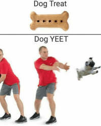 Yeet: Dog Treat  Dog YEET