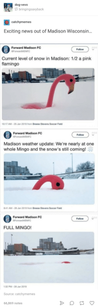 The Full Mingo!: dog-vevo  bringingsaxyback  catchymemes  Exciting news out of Madison Wisconsin..  Forward Madison FC  ForwardMSNFO  Follow  Current level of snow in Madison: 1/2 a pink  flamingo  0:17 AM-25 Jan  2019 from Breese Stevens  Soccer Field  Forward Madison FC  Follow  Madison weather update: We're nearly at one  whole Mingo and the snow's still coming!  :41 AM-28 Jan 2019 from Breese Stevens Soccer Field  Forward Madison FC  Follow  ForwardMSNFC  FULL MINGO!  32 PM-28 Jan 2019  Source: catchymemes  66,869 notes The Full Mingo!