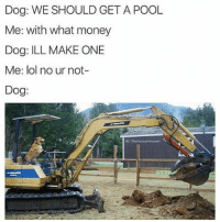 Memes, Pool, and 🤖: Dog: WE SHOULD GET A POOL  Me: with what money  Dog: ILL MAKE ONE  Me: lol no ur not-  Dog: Doggo does what he wants (@thefunnyintrovert)