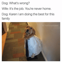Her: you leave paw prints on the rug Dog: I SLAVE ALL FUCKING DAY AT THE PARK AND THIS IS WHAT I COME HOME TO: Dog: What's wrong?  Wife: It's the job. You're never home.  Dog: Karen am doing the best for this  family  IG: The Funny Introvert Her: you leave paw prints on the rug Dog: I SLAVE ALL FUCKING DAY AT THE PARK AND THIS IS WHAT I COME HOME TO