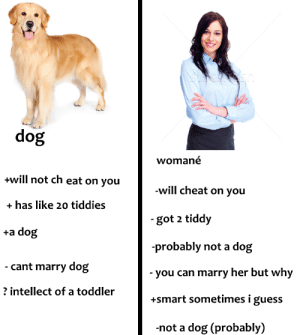 Lmao, Guess, and MeIRL: dog  womane  +will not ch eat on you  +has like 20 tiddies  +a dog  -will cheat on you  got 2 tiddy  probably not a dog  - you can marry her but why  +smart sometimes i guess  -not a dog (probably)  cant marry dog  intellect of a toddler me🐶irl #meirl #lmao