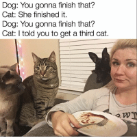 Dog: You gonna finish that?  Cat: She finished it.  Dog: You gonna finish that?  Cat: told you to get a third cat. @lazy_keto knows it's not easy eating with a houseful of animals. Stay strong girl! (Pic cred @lazy_keto) 🙌🏼