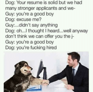 Dank, Fucking, and Job Interview: Dog: Your resume is solid but we had  many stronger applicants and we-  Guy: you're a good boy  Dog: excuse me?  Guy:...didn't say anything  Dog: oh...l thought I heard...well anyway  don't think we can offer you the j-  Guy: you're a good boy  Dog: you're fucking hired My kind of job interview by Abirvalg44 MORE MEMES