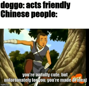 Cute, Memes, and Avatar: doggo: acts friendly  Chinese people:  you're awfully cute, but  infortunately for  ou, you're made  feat  imgflip.com what about more avatar memes