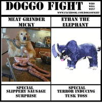 ethan: DOGGO FIGHT  WHO  WILL  WIN?  WWW. FACEB00K.COM/DOGGOFIGHT  MEAT GRINDER  ETHAN THE  MICKY  ELEPHANT  SPECIAL  SPECIAL  SLIPPERY SAUSAGE  TERROR INDUCING  SURPRISE  TUSK TOSS