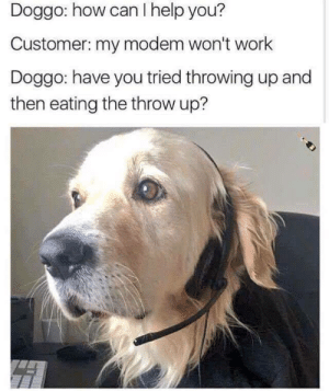 The Call Centre by StrangeClownRabbit FOLLOW 4 MORE MEMES.: Doggo: how can I help you?  Customer: my modem won't work  Doggo: have you tried throwing up and  then eating the throw up? The Call Centre by StrangeClownRabbit FOLLOW 4 MORE MEMES.