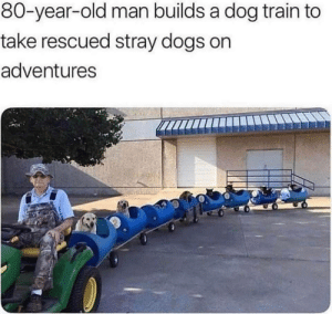 Doggo train: Doggo train