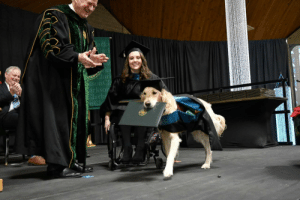 doggos-with-jobs:  This service dog received his Master's Degree in Occupational Therapy from Clarkson University after attending every single class with his human.: doggos-with-jobs:  This service dog received his Master's Degree in Occupational Therapy from Clarkson University after attending every single class with his human.