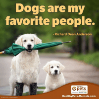 Not only can they be trusted, they give so much love too! 💯🐶: Dogs are my  favorite people.  Richard Dean Anderson  Healthy  Mercola.com  Healthy Pets Mercola.com  o istock com/onotouchspark Not only can they be trusted, they give so much love too! 💯🐶