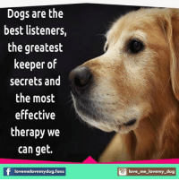#love_me_love_my_dog 💕 Join our awesome group for dog lovers ❤ 💚 Join now ➡ www.facebook.com/groups/1413106548993764: Dogs are the  best listeners,  the greatest  keeper of  secrets and  the most  effective  therapy we  can get.  lovemelovemydog fans  love me lovemy dog #love_me_love_my_dog 💕 Join our awesome group for dog lovers ❤ 💚 Join now ➡ www.facebook.com/groups/1413106548993764