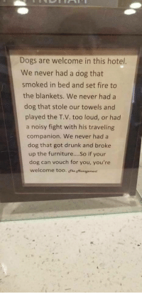 Dogs, Drunk, and Fire: Dogs are welcome in this hotel.  We never had a dog that  smoked in bed and set fire to  the blankets. We never had a  dog that stole our towels and  played the T.V. too loud, or had  a noisy fight with his traveling  companion. We never had a  dog that got drunk and broke  up the furniture....So if your  dog can vouch for you, you're  welcome too. The otanagement <p>Wholesome</p>